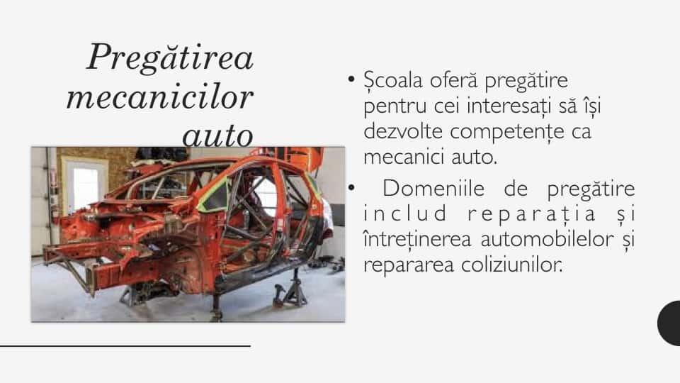 Mecanic Auto.003